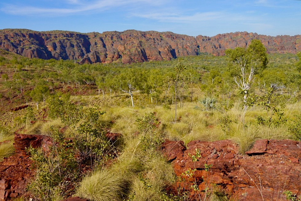 Keep River National Park - Faszinierender Jarnem Lookout: Bungle Bungles oder Kelly's Knob Feeling - Northern Territory