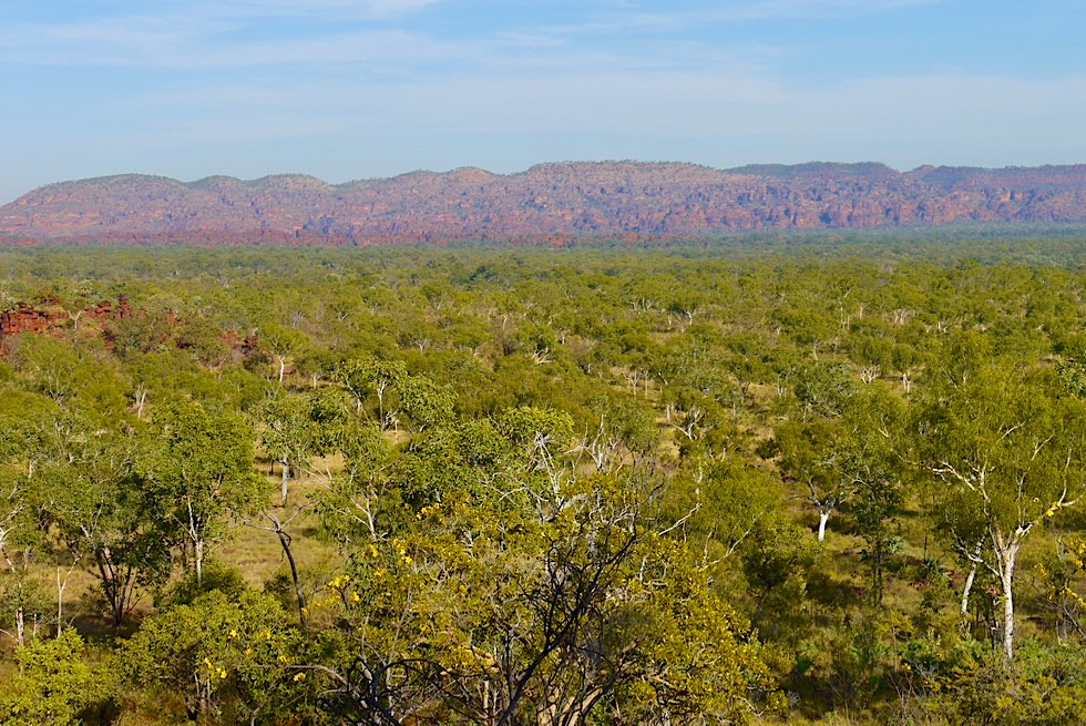 Keep River National Park - Jarnem Lookout: Buschland & Kelly's Knob Sandstein - Northern Territory