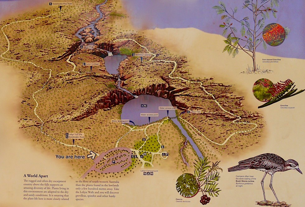 Leliyn oder Edith Falls - Schautafel vermitteln Überblick über die Seen-Wasserfall-Landschaft - Nitmiluk National Park - Northern Territory