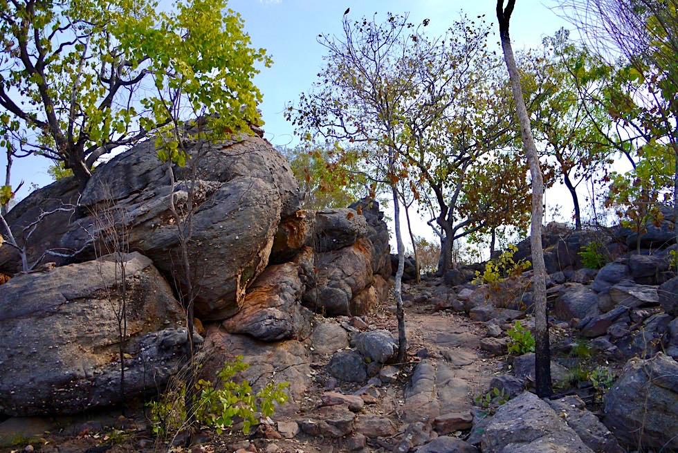 Faszinierend schöner Leliyn Loop Walk - Edith Falls - Nitmiluk National Park - Northern Territory
