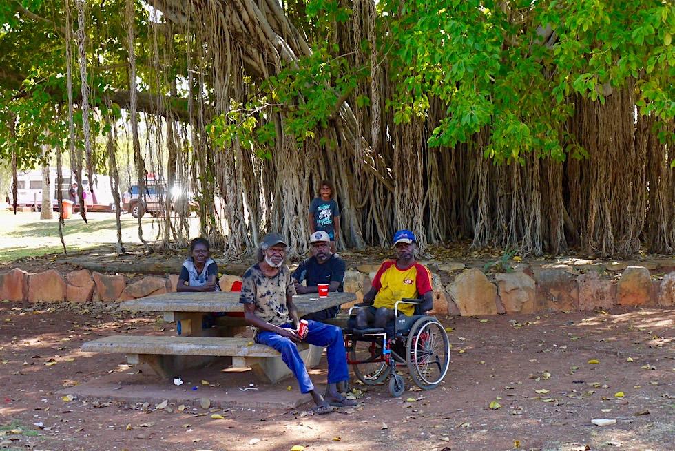 Mataranka - Aboriginal Treffpunkt beim großen Baum - Northern Territory