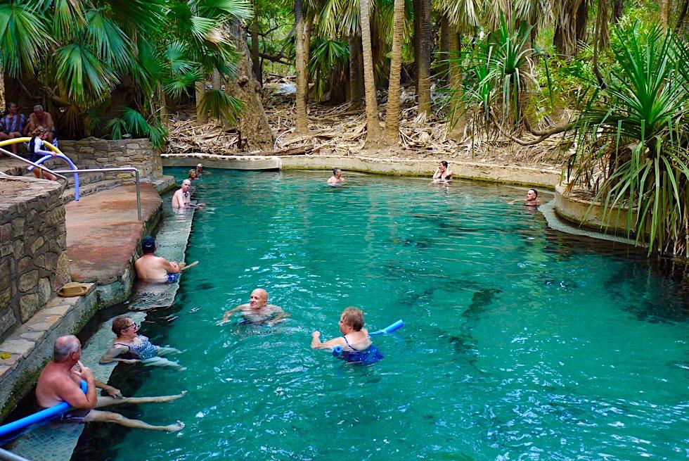 Mataranka Thermal Pool - Kristallklare warme Quellen, aber einbetoniert & viele Menschen - Elsey National Park - Northern Territory