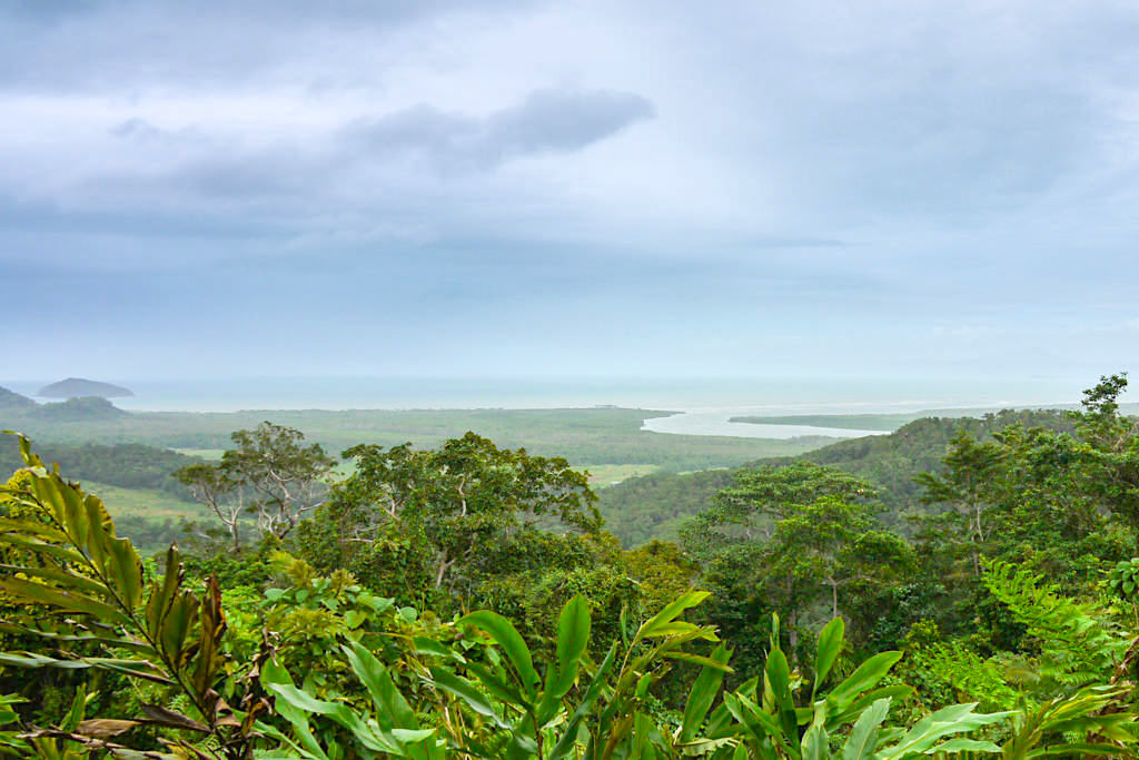 Ausblick vom Mt. Alexandra Lookout - Daintree National Park & Cape Tribulation - Queensland