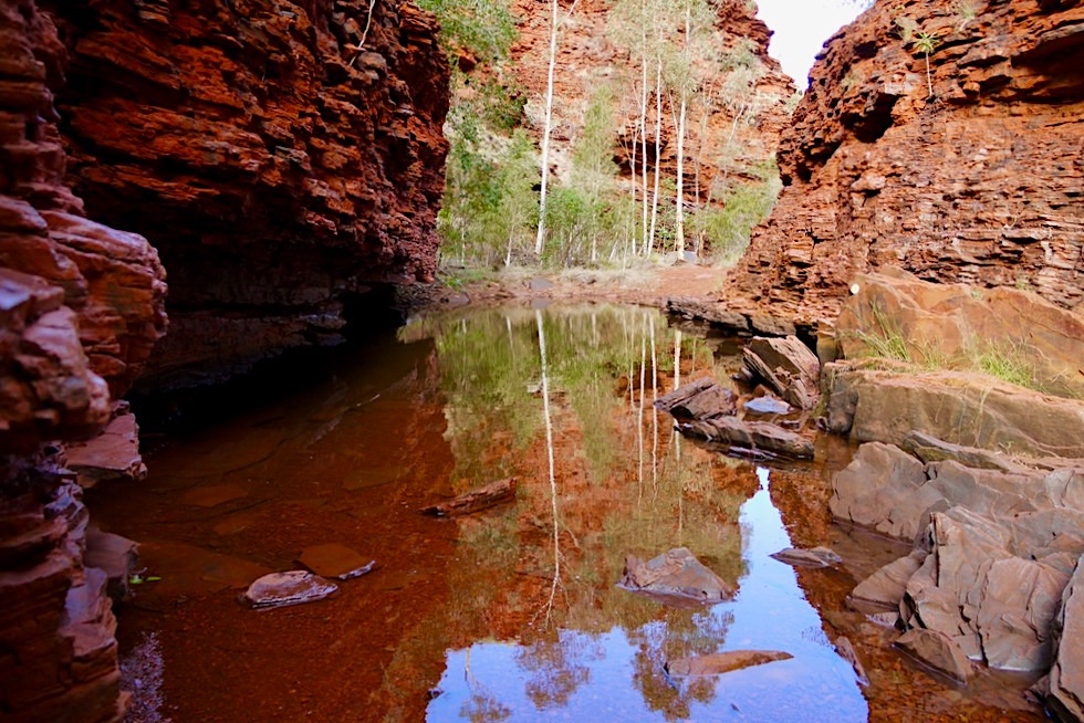 Weano Gorge - Wasserlöcher auf dem Weg zum Handrail Pool - Karijini National Park - Pilbara - Western Australia