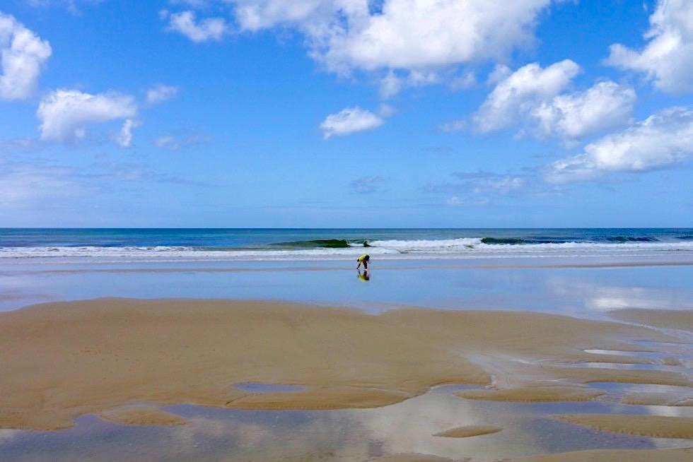 Fraser Island - Seventy Five Mile Beach: Mensch beim Muschelsammeln - Queensland
