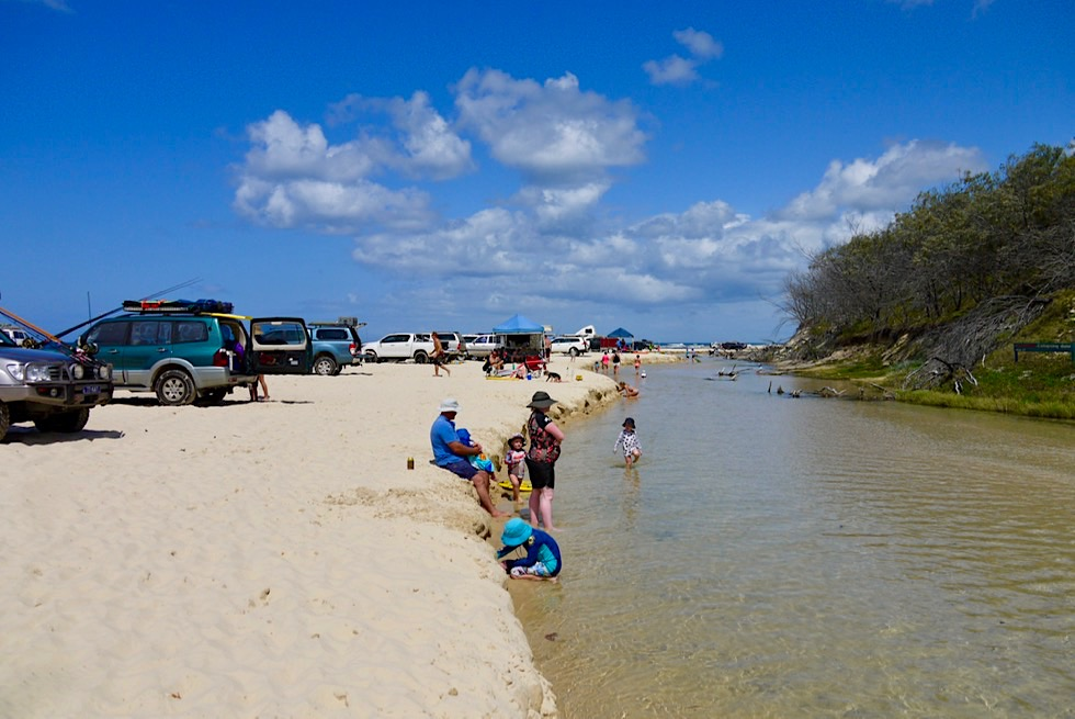 Fraser Island - Eli Creek & Strand: Picknicken & Badefreuden - Queensland