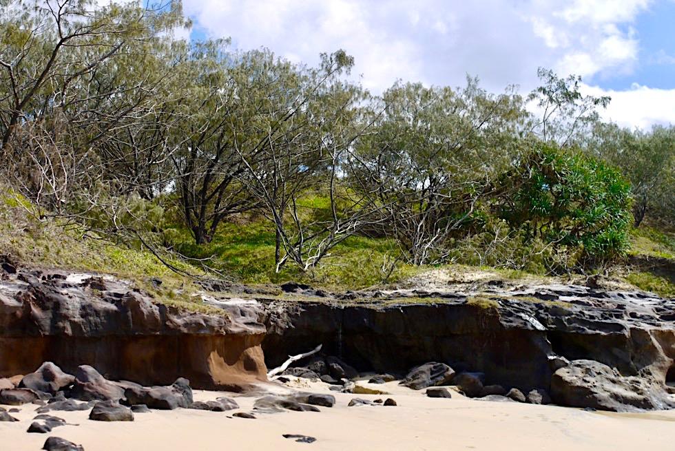 Fraser Island - Felsplateau mit Buschlandschaft im Westen - Queensland