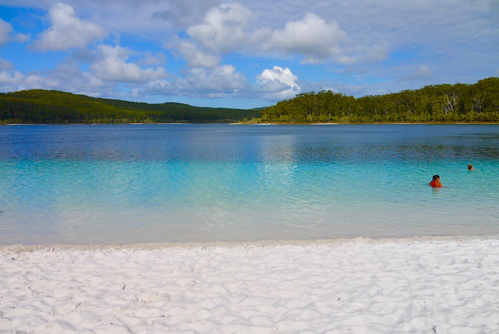 Fraser Island - Lake McKenzie: eine Farbexplosion in Blau - Great Sandy National Park - Queensland