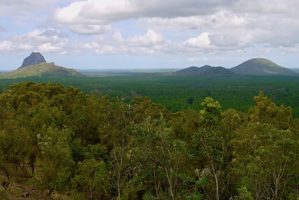 Glass House Mountains Lookout: Mt Tibrogargan, Trachyte Range, Mt Beerburrum - Sunshine Coast Hinterland - Queensland