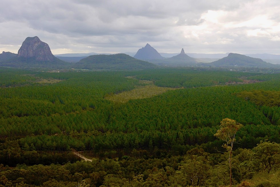 Glass House Mountains - Wild Horse Mountain: Fantastischer Ausblick auf alle Vulkanberge - Queensland