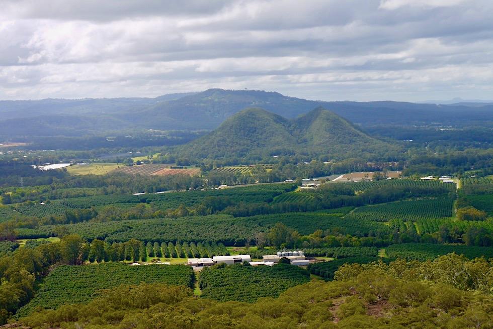 Glasshouse Mountains: Nt Ngungun - Gipfelausblick auf Mt Tunbubudla oder auch Twins - Queensland