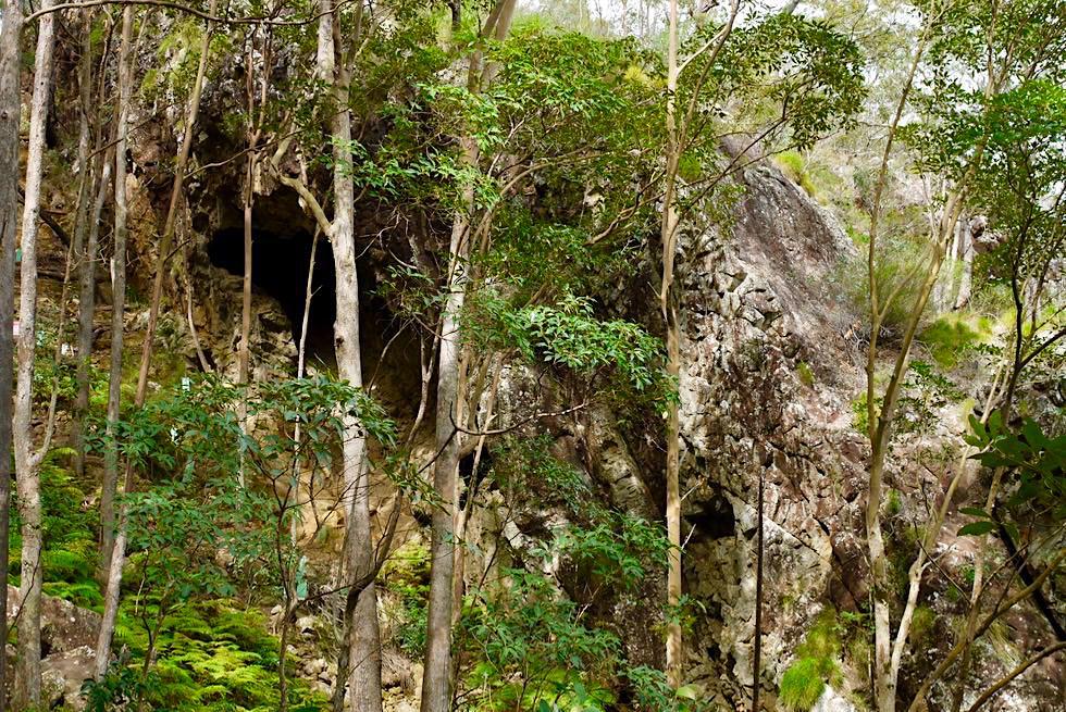 Glass House Mountains: Mt Ngungun - Höhlen beim Aufstieg zum Gipfel - Sunshine Coast - Queensland