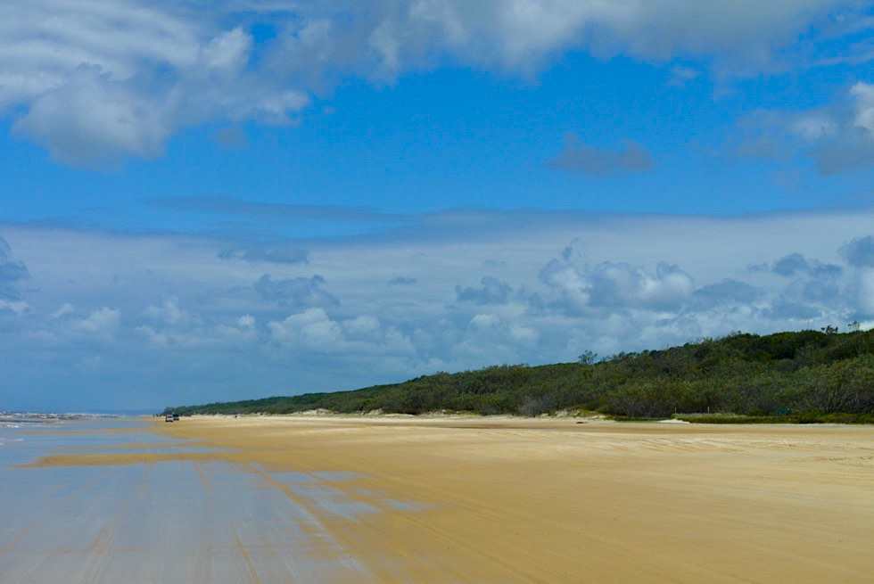Eines der Highlights von Australien: Fraser Island & Seventy Five Mile Beach - Great Sandy National Park - Queensland