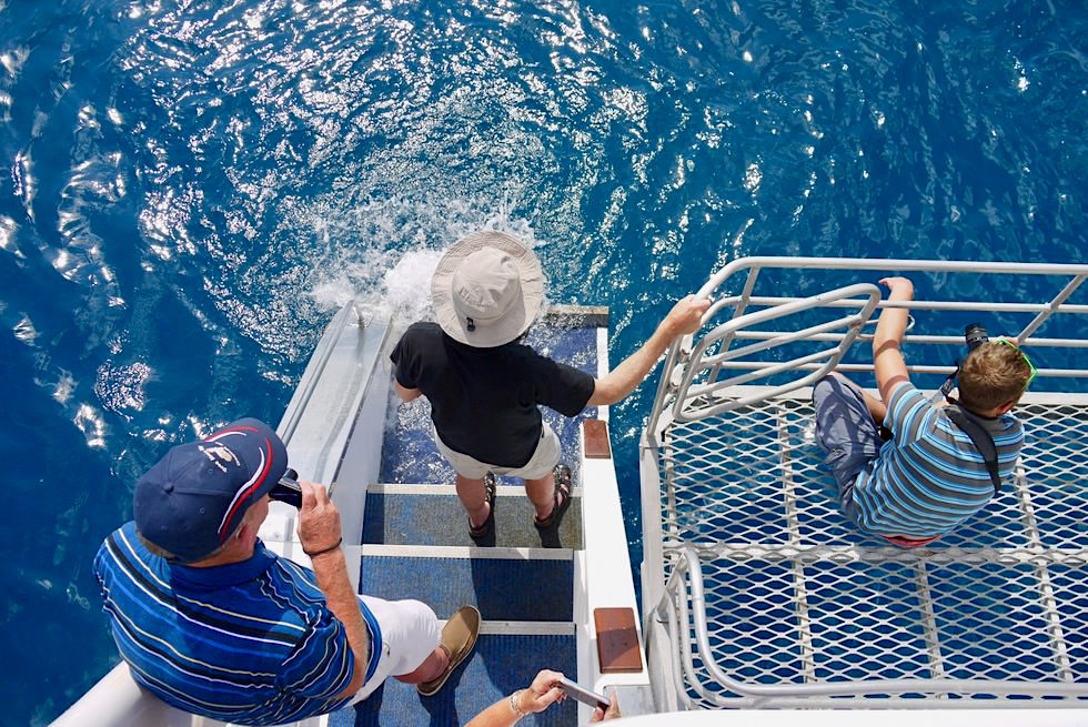 Walbeobachtung auf der Freedom III - Freedom Whale Watch - Hervey Bay - Queensland