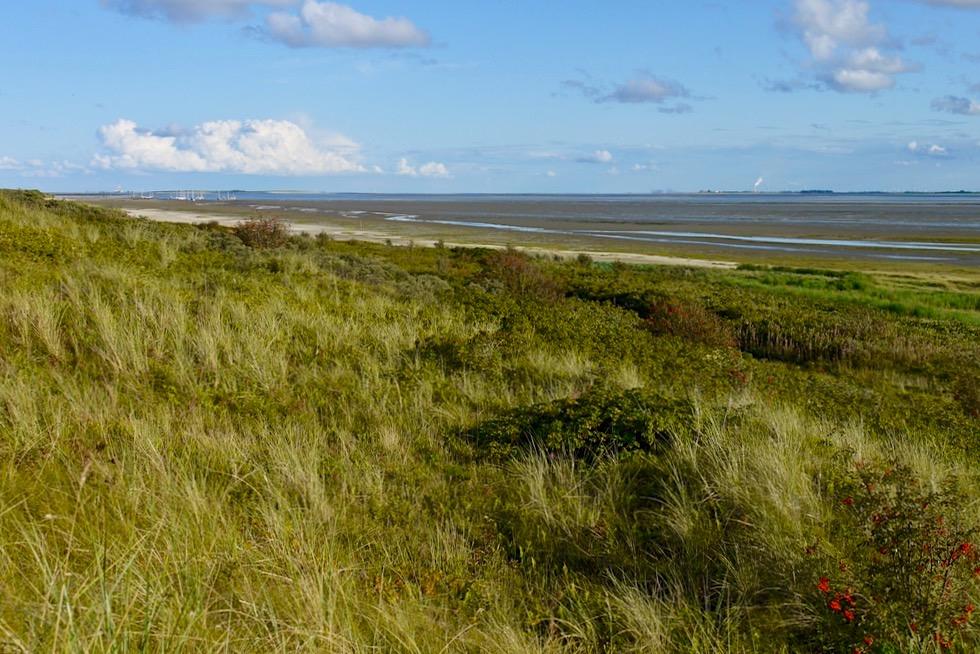 Wangerooge - Ausblick Jever Aussichtsplattform Richtung Watt - Ostfriesische Inseln - Nordsee