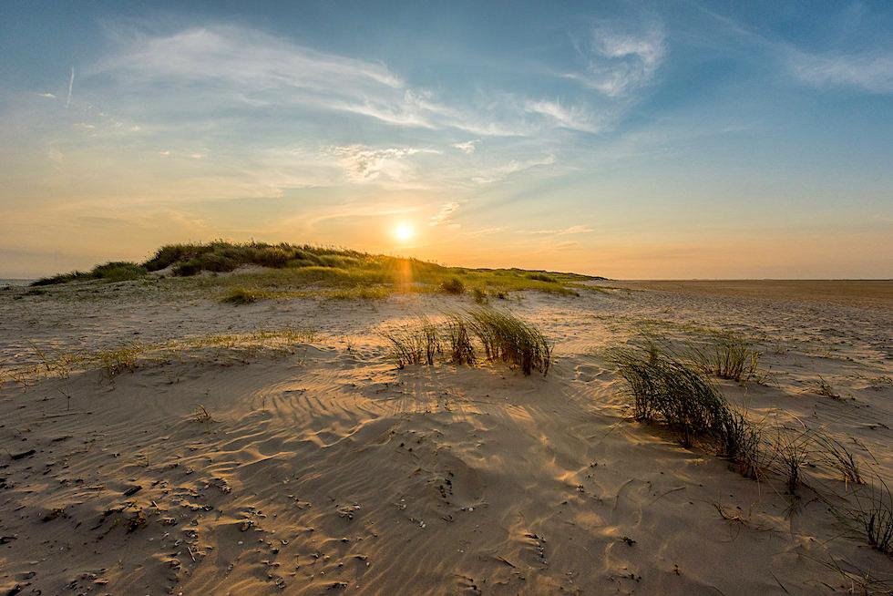 Wangerooge - Dünenlandschaft im Osten der Insel - Ostfriesische Inseln - Nordsee
