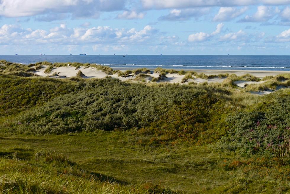 Wangerooge - Salzwiesen & Dünenführung - Ostfriesische Inseln - Nationalpark Wattenmeer & Nordsee