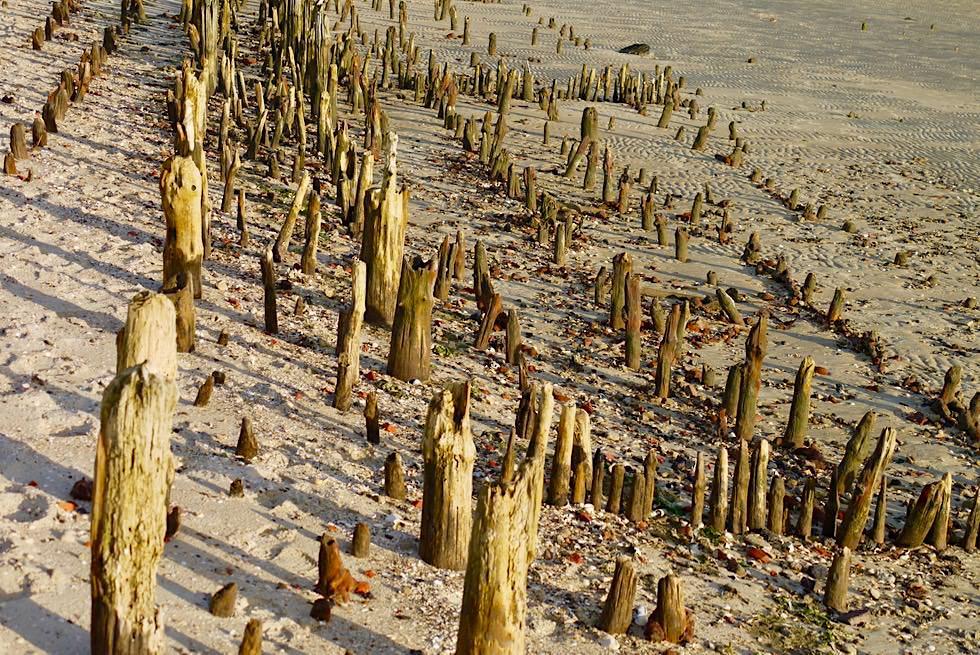 Wangerooge - Überbleibsel des ehemaligen Ostanlegers - Ostfriesische Inseln - Nordsee