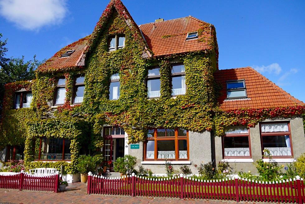 Wangerooge - Vielseitige Unterkünfte: Idyllische Gästehäuser & Bausünden - Ostfriesische Inseln - Nordsee