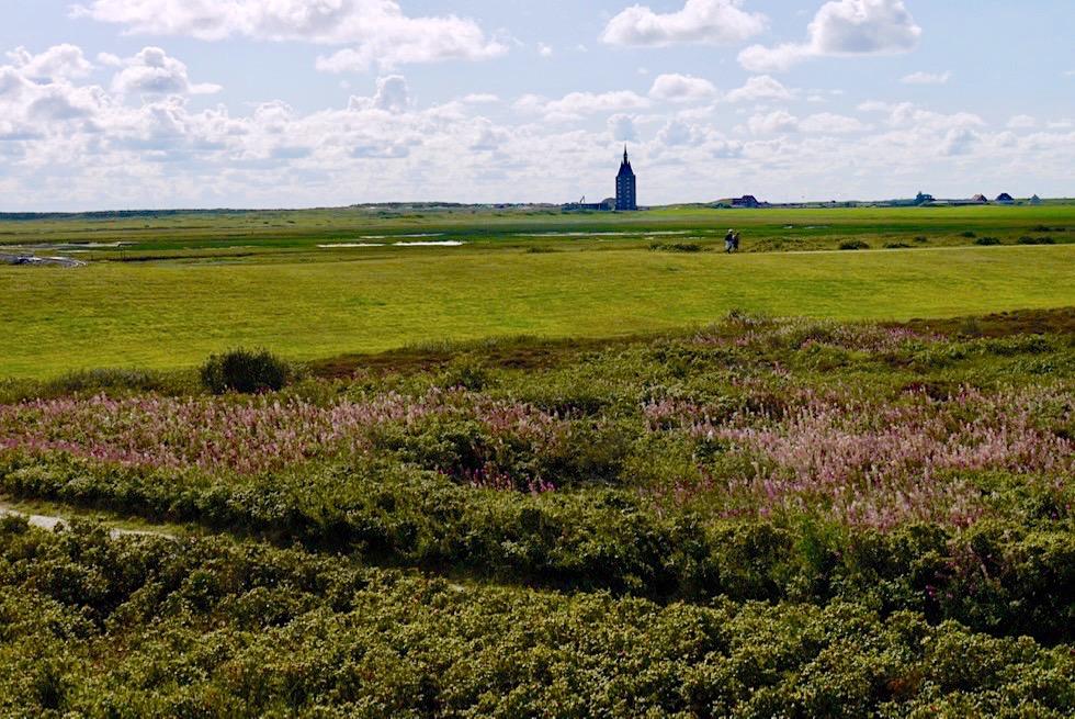 Wangerooge - Vielfalt von Wander-& Radwegen im Westteil machen die Erkundung leicht - Ostfriesische Inseln - Nordsee