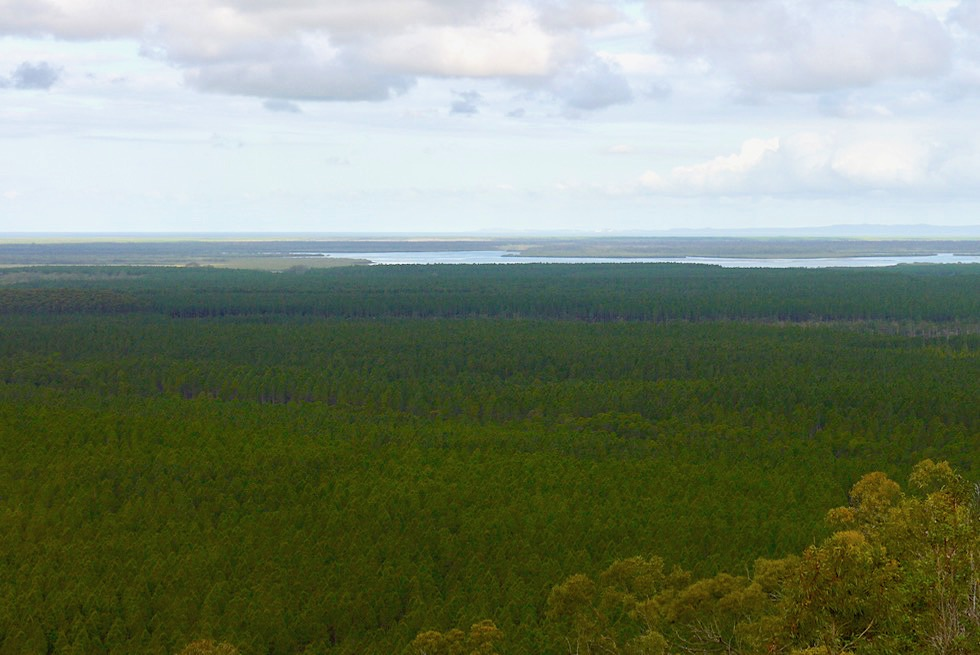 Wild Horse Mountain - Ausblick Bribie Island & Coral Sea - Glass House Mountains - Queensland