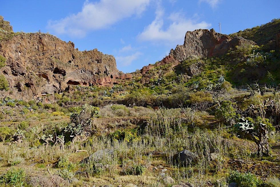 Barranco de San Miguel Wanderung - Schluchtenwände laden zum ersteigen ein - Valsequillo de Gran Canaria