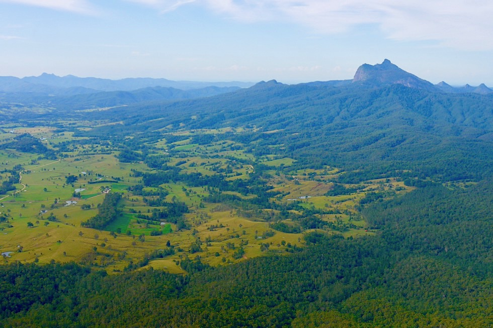Border Ranges National Park - Blackbutt Lookout: Sensationeller Ausblick auf Mt Warning / Wollumbin & Tweed Valley - New South Wales