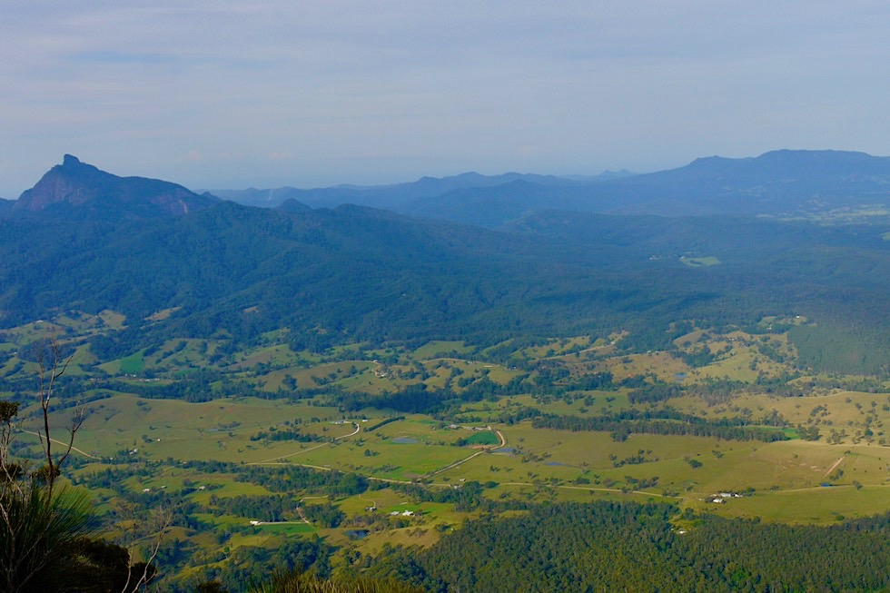 Border Ranges - Mt Warning & Tweed Valley vom Pinnacle Lookout gesehen - New South Wales