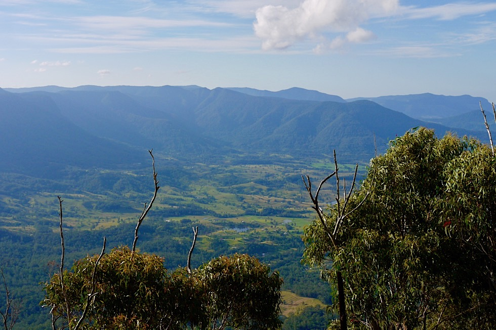 Border Ranges NP - The Pinnacle Lookout & Ausblick ins Tweed Valley - New South Wales