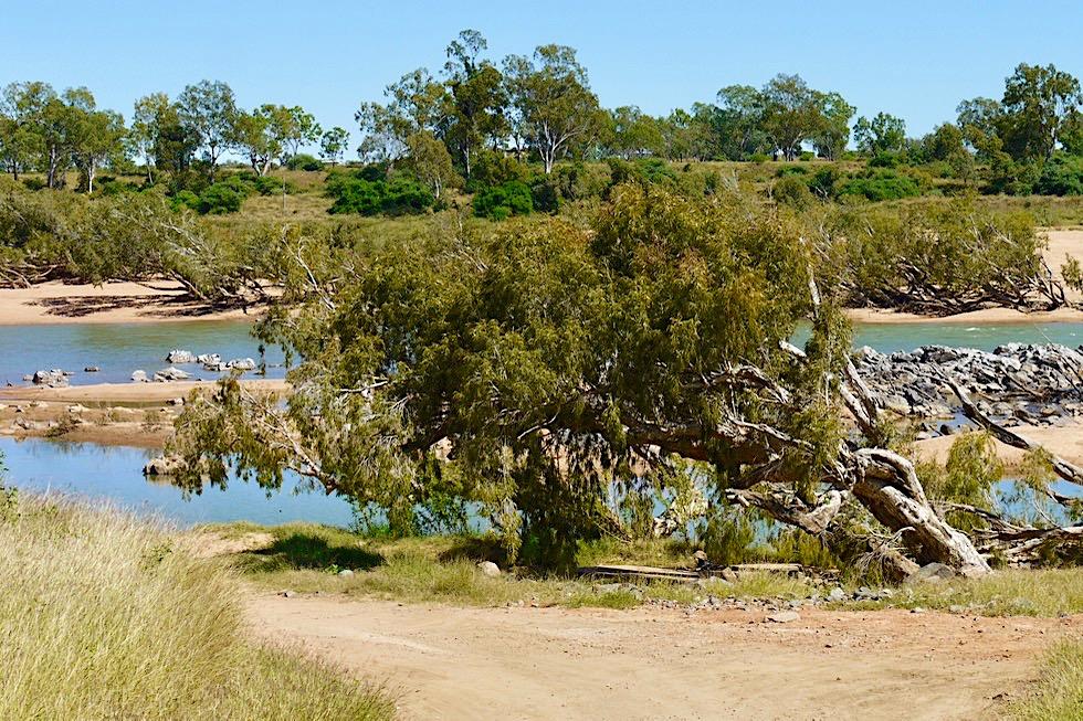 Burdekin River bei Charters Towers - Allrad Pisten, Vögelbeobachtung, Angeln - Queensland