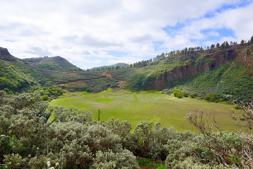 Caldera de los Marteles: großer Vulkankessel - Valsequillo de Gran Canaria