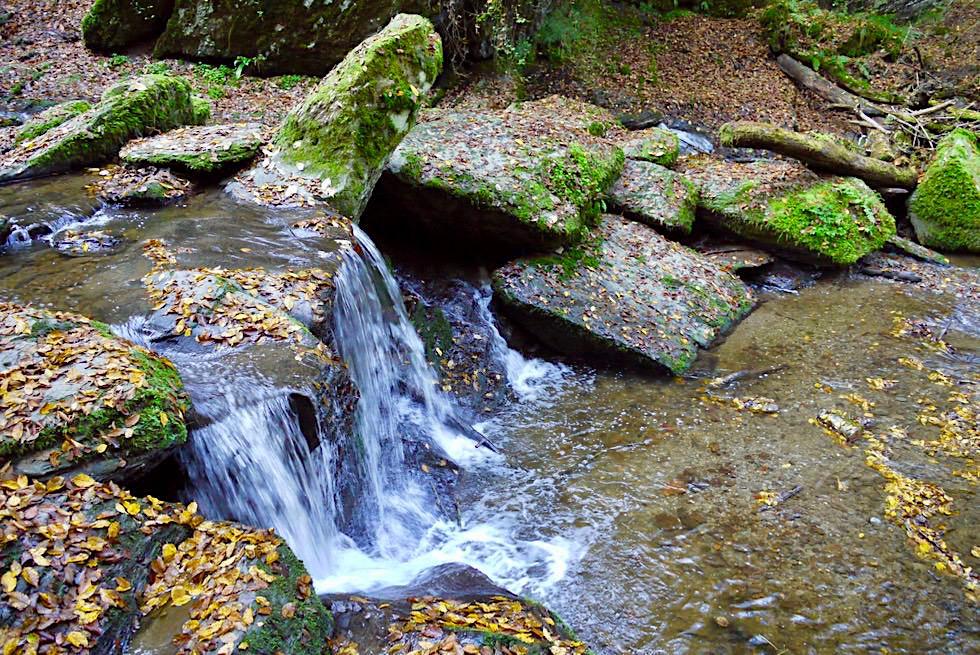 Ehrbach Wasserfall - Traumschleife Erbachklamm Highlight - Hunsrück-Wanderung - Rheinland-Pfalz