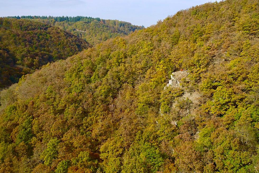 Traumschleife Ehrbachklamm - Atemberaubend schöner Ausblick auf die Teufelskanzel - Hunsrück Wanderung - Rheinland-Pfalz Reisetipps