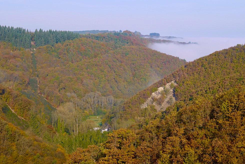 Traumschleife Ehrbachklamm - Beulslay Aussichtspunkt & Brandengrabenmühle - Rheinland-Pfalz