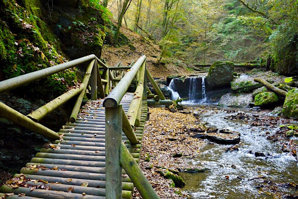 Traumschleife Ehrbachklamm - eines der Highlights: Holzbrücke & kleiner Wasserfall - Hunsrück Wanderung - Rheinland-Pfalz