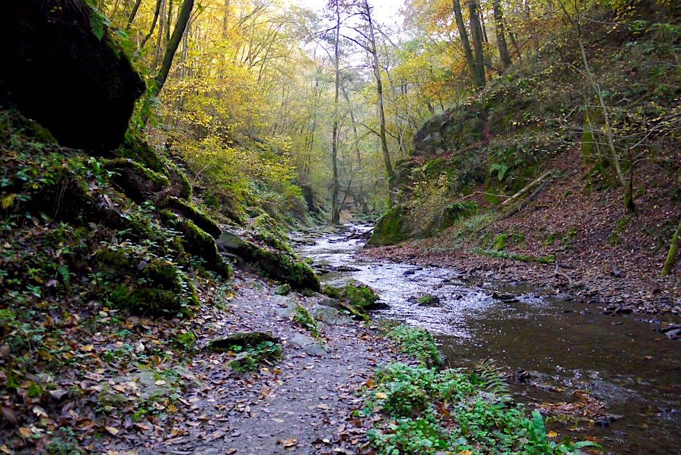 Ehrbachklamm - Keine Klamm, sondern Schlucht - Hunsrück-Wanderung - Rheinlands-Pfalz
