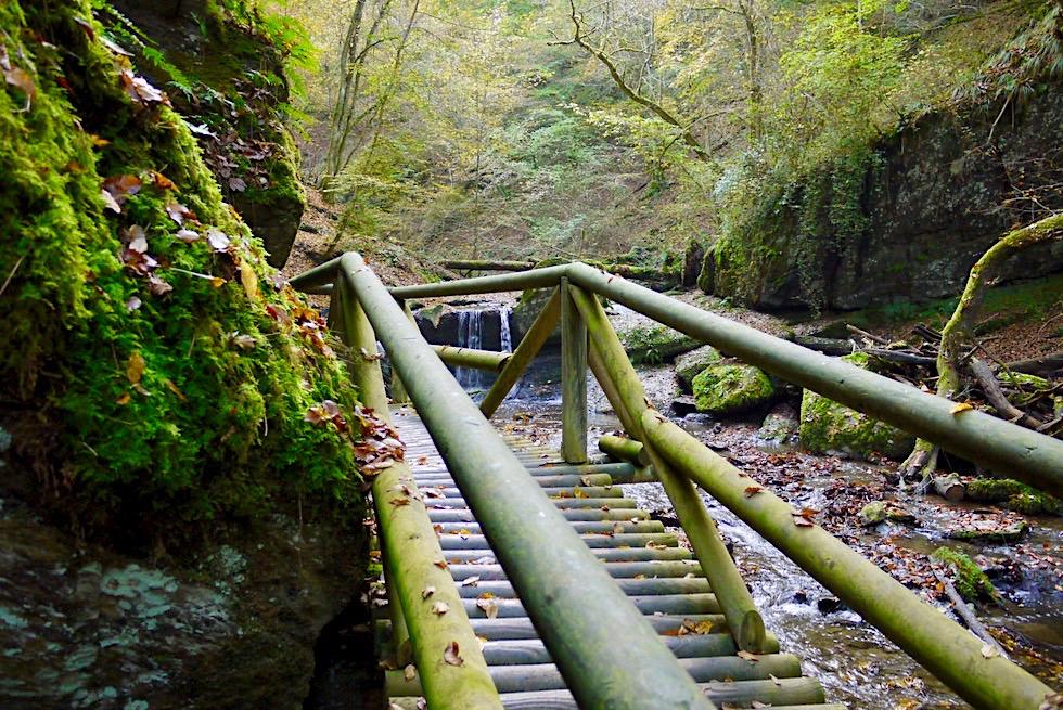 Traumschleife Ehrbachklamm - Schönste Holzbrücke & wildschönste Stelle - Rheinland-Pfalz