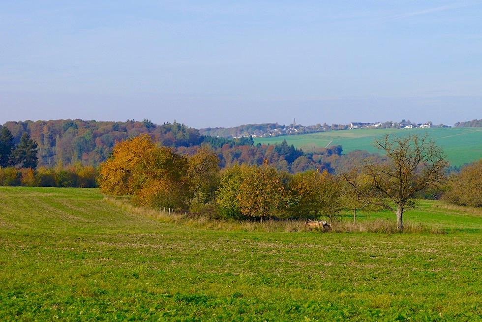 Ehrbachklamm Traumschleife - Beginn der Wanderung führt über Hunsrück Hochebne - Rheinland-Pfalz