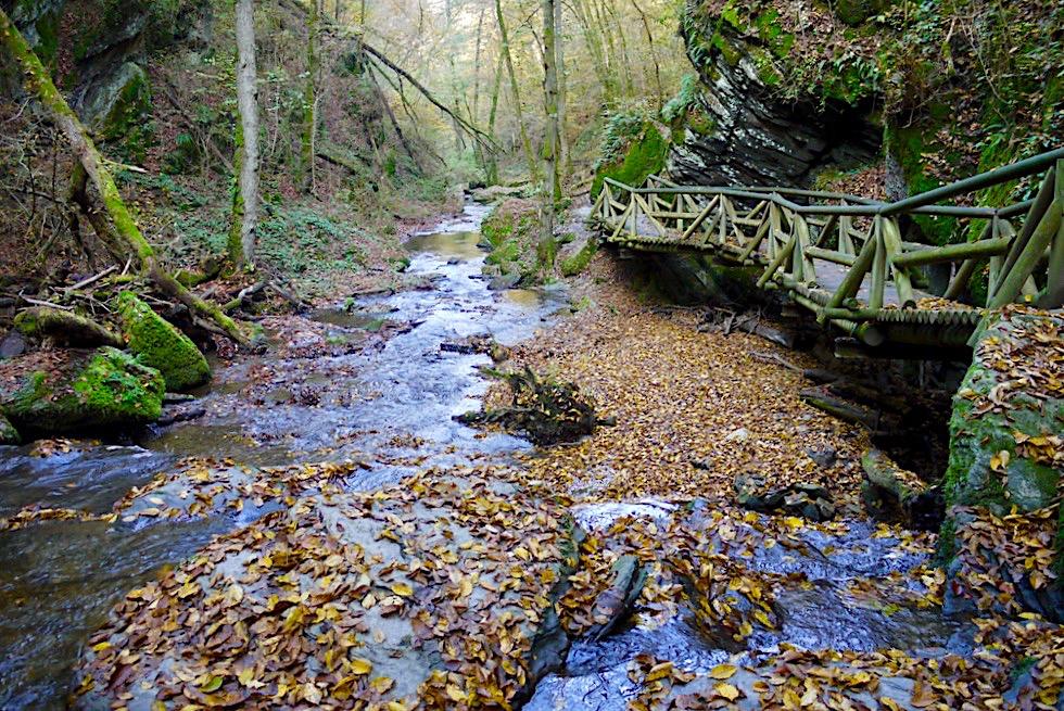 Ehrbachklamm Traumschleifen-Highlight - Hunsrück-Wanderung - Rheinland-Pfalz
