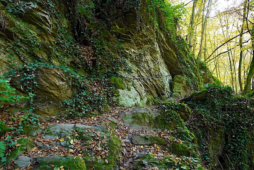 Traumschleife Ehrbachklamm - Dunkelgrün vermooste Felsen - Hunsrück Wanderung - Rheinland-Pfalz