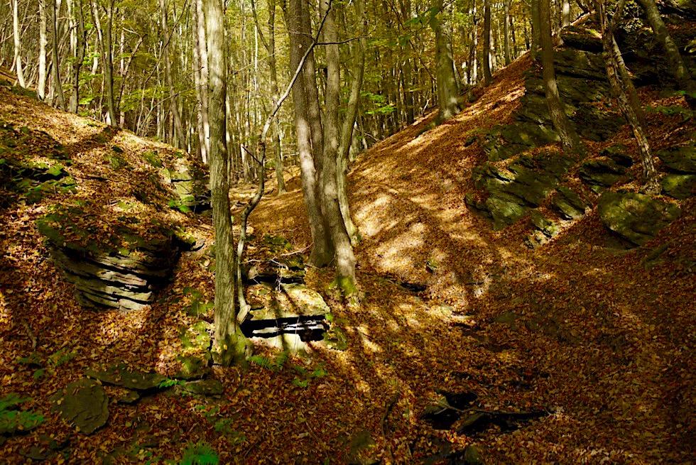 Traumschleife Ehrbachklamm - Waldweg führt zur Teufelskanzel - Hunsrück Wanderung - Rheinland-Pfalz
