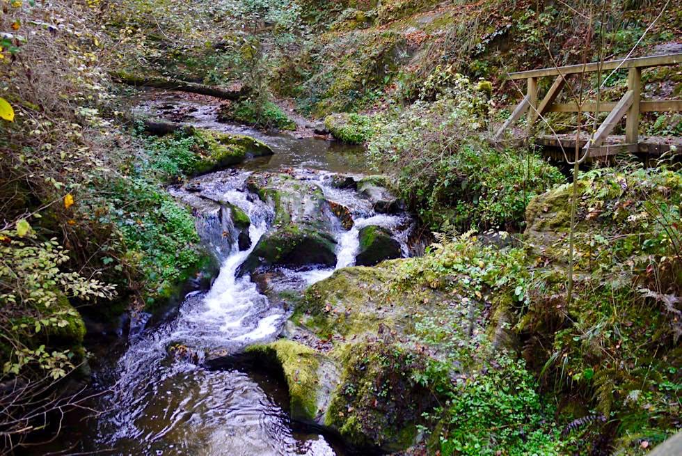 Traumschleife Ehrbachklamm führt vorbei an kleinen Wildwasserschnellen - Hunsrück Wanderung - Rheinland-Pfalz