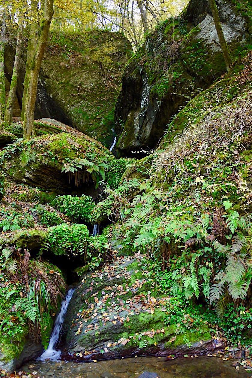 Traumschleife Ehrbachklamm - Zuflüsse prasseln über Felsen & kleine Wasserfälle - Hunsrück-Wanderung - Rheinland-Pfalz