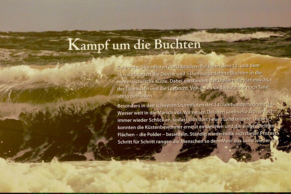 Greetsiel Nationalpark Haus - Ausstellungen - Krummhörn - Ostfriesland