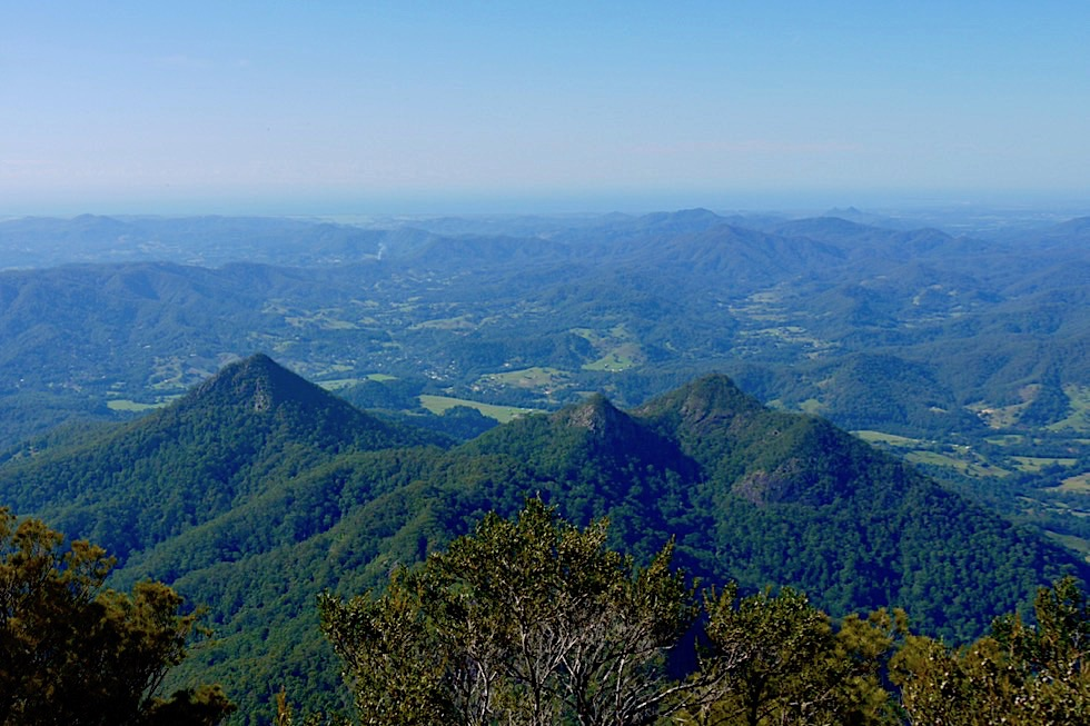 Mt Warning - Ausblick vom Gipfel auf Berge & Tweed Valley - Wollumbin National Park - New South Wales