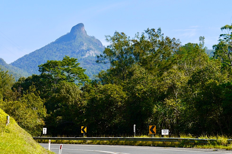 Mt Warning - Ausblick auf Wollumbin vom Tweed Valley aus - New South Wales