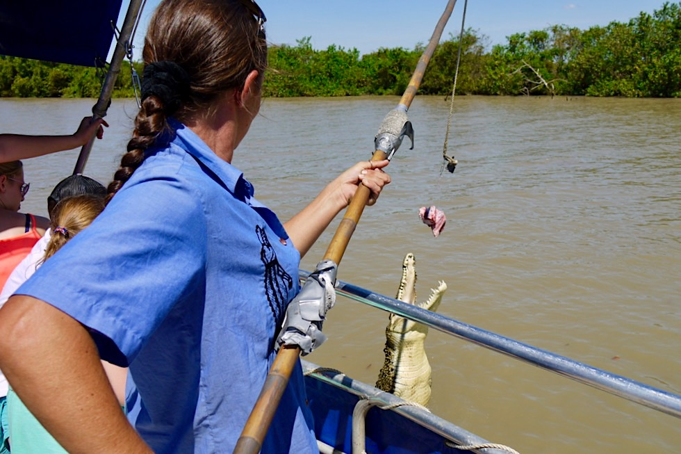 Spectacular Jumping Crocodile Cruise - Crew hängt Köder aus für Salzwasserkrokodile - Northern Territory