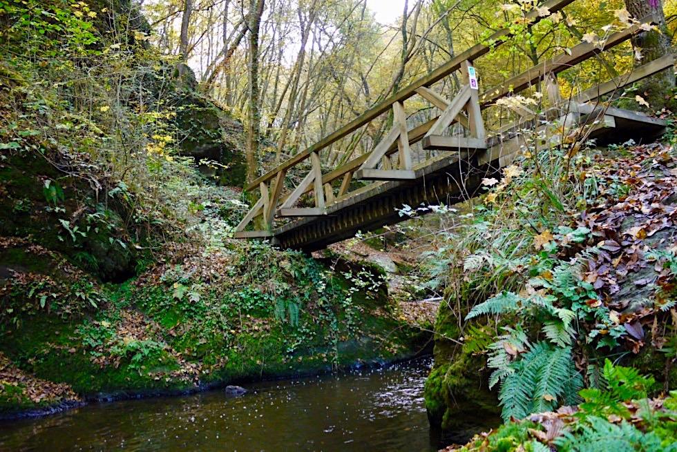 Traumschleife Ehrbachklamm - Holzbrücken führen über den sich windenden Ehrbach - Hunsrück-Wanderung - Rheinland-Pfalz