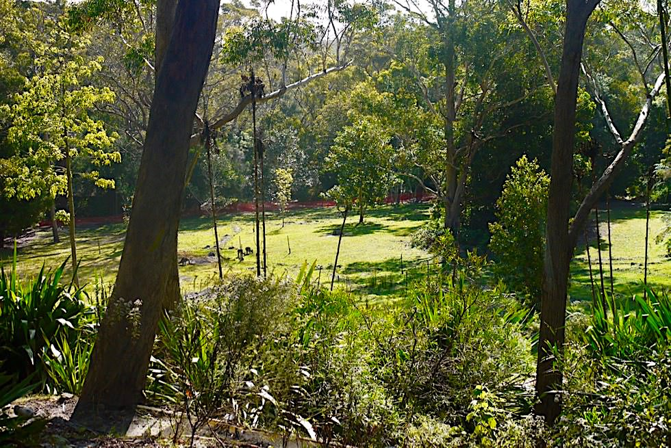 Booderee Botanic Gardens - Booderee National Park - New South Wales