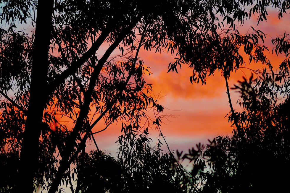 Booderee National Park - Green Patch: Sonnenuntergang vom Campground gesehen - New South Wales